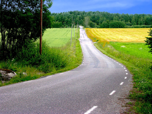 vanishing-road-1248499.jpg